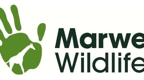 marwell-wildlife